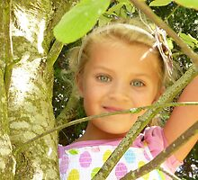 Beauty through the branches. by Fara