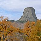 Devil&#x27;s Tower by Graeme  Hyde