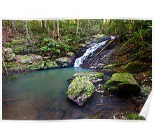 Kondalilla Falls, QLD - Australia Poster