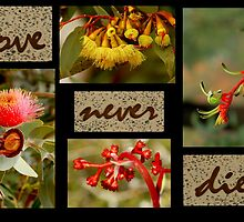 LOVE NEVER DIES by myraj