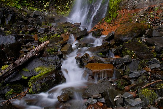 The Rush by Charles & Patricia   Harkins ~ Picture Oregon
