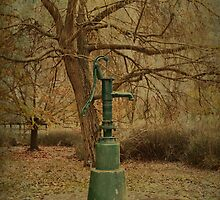 Water Fountain by Elaine Teague