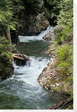 Franklin Falls, Denny Creek, Snoqualmie Forest by Stacey Lynn Payne