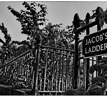Jacob's Ladder (mono) by Den McKervey