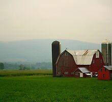 New York Farmstead by reindeer