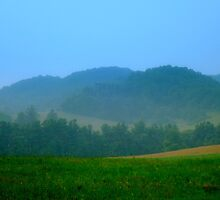 BLUE RIDGE MIST - I    ^ by ctheworld