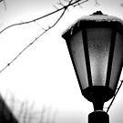 The Lamp Post by Suzanne Gordan