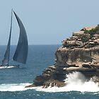 Wild Oats by Sydney Heads by Nick Wilsher