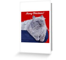 Bayou - A Portrait of a Himalayan Cat Christmas Card Greeting Card