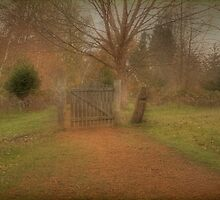 Gate at Golden Valley by Elaine Teague