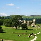 Bolton Abbey, Wharfedale, N. Yorkshire by artwhiz47
