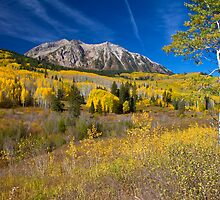Kebler Pass Scenery by CrowningGlory