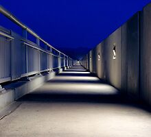 Stark and lonely, the Mike O'Callaghan – Pat Tillman Memorial bridge at night by raceman
