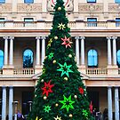 Sydney Christmas Tree by Ron Hannah