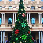 Sydney Christmas Tree by Ron Hannah