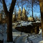 Central Park West by berndt2