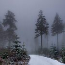 Early Snow by Charles &amp; Patricia   Harkins ~ Picture Oregon