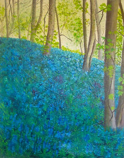 Bluebell Wood, Ilkley  by Susan Duffey