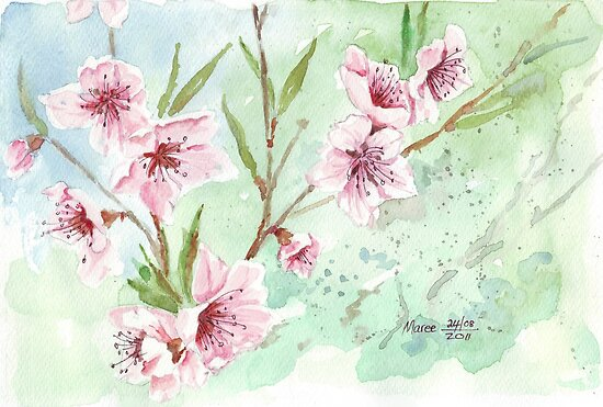 It's Spring fever! by Maree  Clarkson