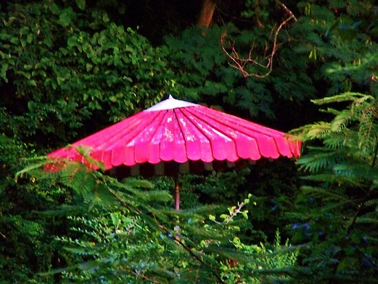 old umbrella w greenery contrast by kentuckashee