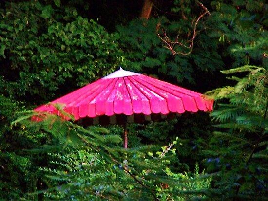 old umbrella w greenery contrast by kentuckashee
