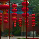 Lanterns, Ri Tan Park, Beijing. by bulljup