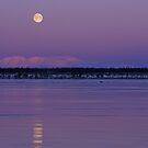 Moonrise over Mount Susitna by Tim Grams