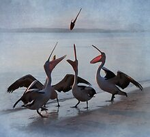 Flying Fish - Pelican Series by Tainia Finlay