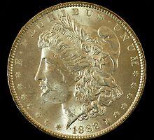 1888 Coin by Corri Gryting Gutzman