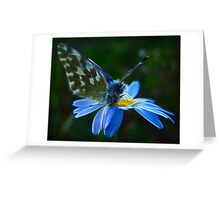 Elementary Fractal Angel Greeting Card