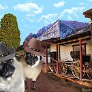 (*•.¸♥¸.•*´) What Part Of PugsTown Don't U Understand?  (*•.¸♥¸.•*´) by ╰⊰✿ℒᵒᶹᵉ Bonita✿⊱╮ Lalonde✿⊱╮