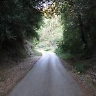 Narrow path by mdagis