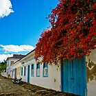 Paraty Colonial Town by Daniel  Archer
