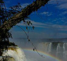 Iguass falls - Garganta del Diablo (Devils Throat) by Daniel  Archer
