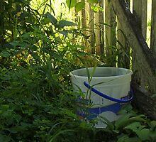 The Ice Cream Bucket by Rachel Sonnenschein