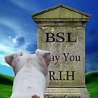 Bury BSL....May It Rest In Hell by Zdogs