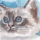 Brilliant blue eyes  by acquart