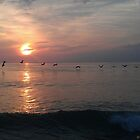Brown Pelicans at Dawn by SkekTek