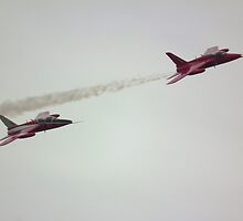 Gnats X2 by Andy Jordan