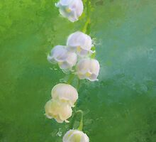 Lily Of The Valley by CrowningGlory