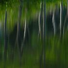 Summer Trees Reflection Impressisim by Karol Livote