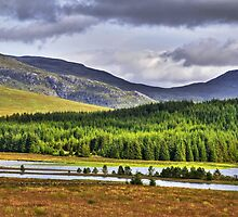 Across Loch Laggan by GillBell