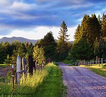 Farm Access Road by rocamiadesign