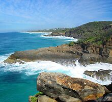 Noosa National Park. by Brian Puckey