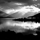 Lake Te Anau. South Island, New Zealand.  by Ralph de Zilva