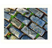Goodbye Yellow Brick Road - Hello Blue Cobblestone Road ©  Art Print