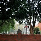 Pinjarra in the Rain by bonhy