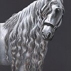 Black & White Portraits by Nicole Zeug by Nicole Zeug