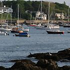 Low Tide in Marblehead by Michelle Callahan
