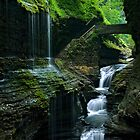 Watkins Glen Falls by Henry Jager